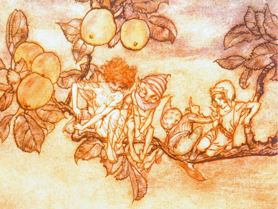 Apples and Fairies, Arthur Rackham (12X16)