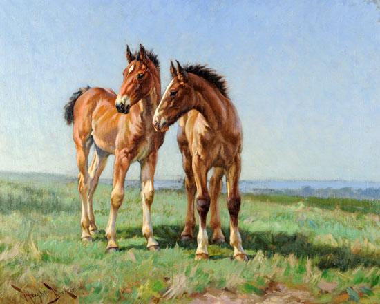 Foals, Wright Barker