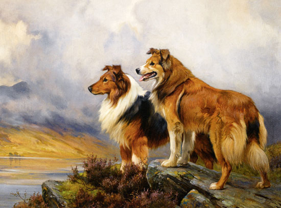 Two  Collies Above a Lake, Wright Barker