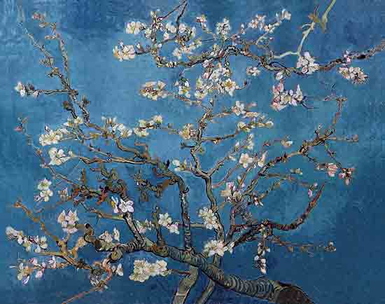 Blossoming Almond Tree Vincent van Gogh (22X28)