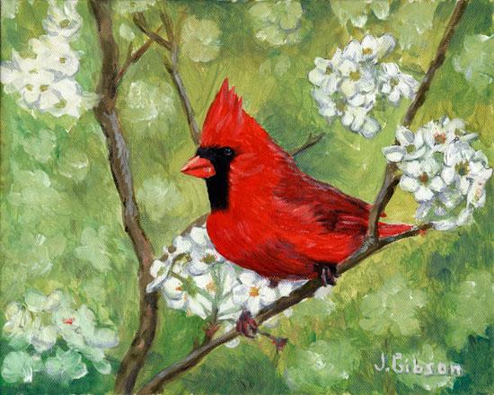Cardinal, Joyce Gibson (8X10)