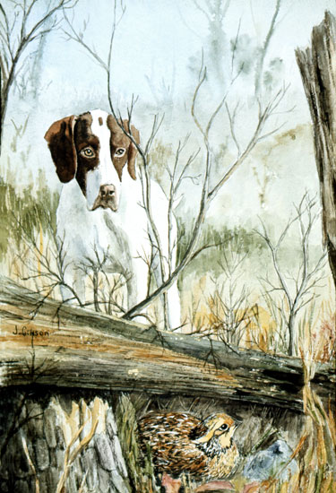 Dog and Quail, Gibson