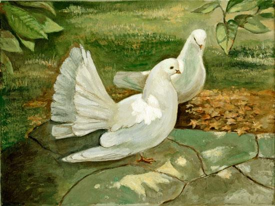 Doves, Joyce Gibson
