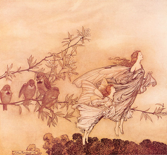 Fairies in the Spring, Arthur Rackham (16X17.25)