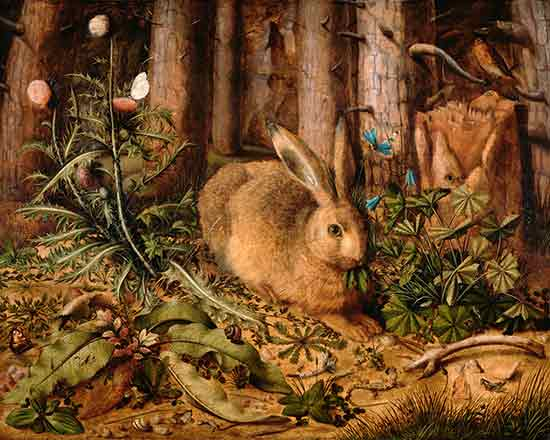 A Hare in the Forest,Hans Hoffman