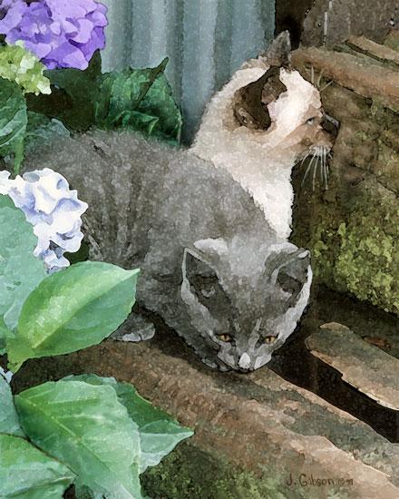 Kittens, Joyce Gibson