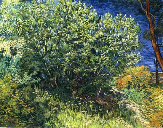 Lilac Bush, Vincent van Gogh