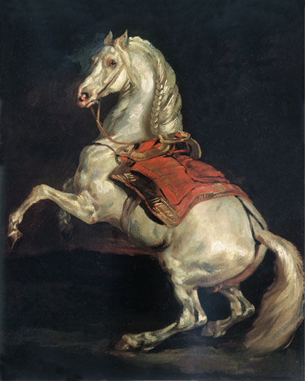 Napoleon's Stallion, Tamerlan, Gericault (16X20)