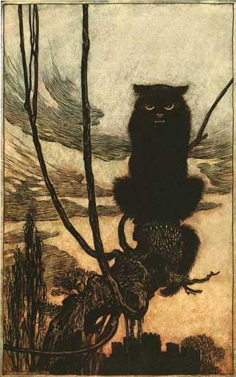 Black Cat, Arthur Rackham