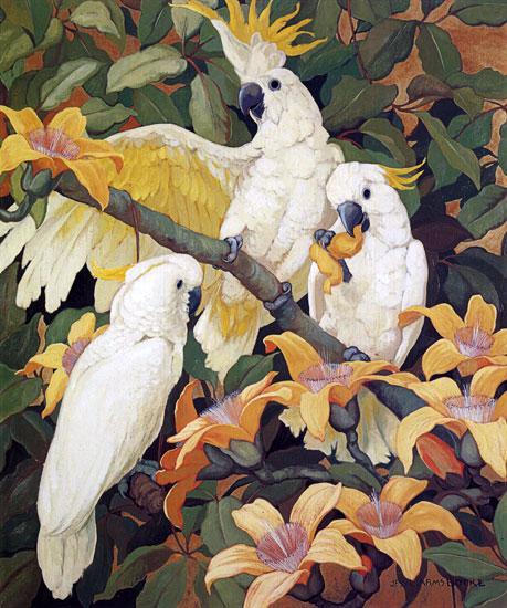 Sulpher Crested Cockatoos, Jessie Armes Botke (18.35X22)