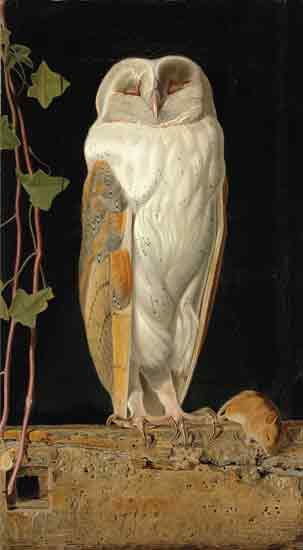 The White Owl, William James Webbe